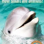فیلم مستند چقدر حیوانات باهوش هستند